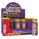 LIPOTEC POWER 3000 20 VIALES