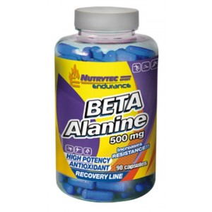 ENDURANCE BETA ALANINE 90 CAPS