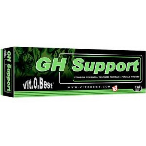 GH SUPPORT 120 CAPS