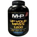 UP YOUR MASS 1200 2,8 KG