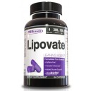 LIPOVATE 84 CAPS