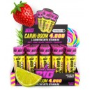 CARNIBOOM 4000 20X60 ML